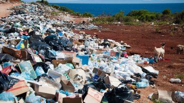 WasteMachine — переворот в области экологии